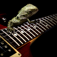 Jamming Lizard